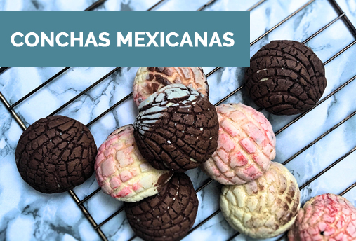 Conchas Mexicanas Blog