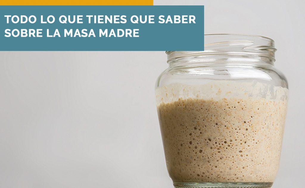 Masa Madre Blog