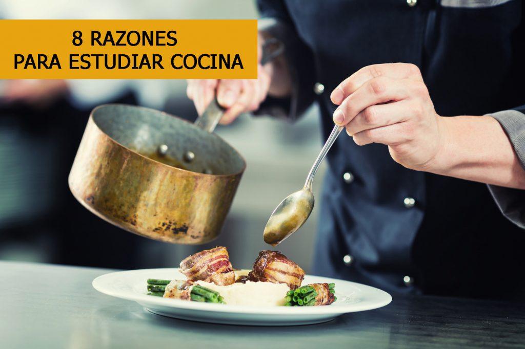 Razones Para Estudiar Cocina